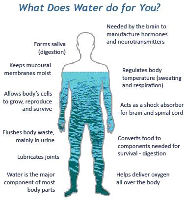 Water Retention Becomes A Common Topic When You Re Trying To Lose Weight Should Never Stop Drinking Excessive Is