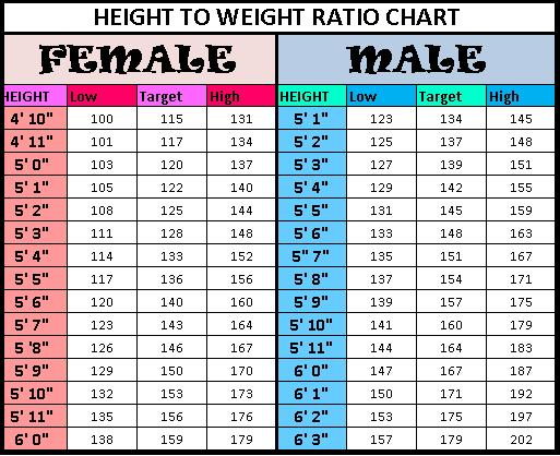 Height_to_weight_chart